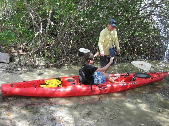Sea Life Kayak Adventures : Tom giving instruction on Kayaking paddling...