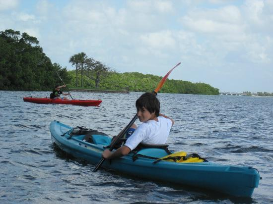 Sea Life Kayak Adventures: Sea Life Kayak Adventure experience...