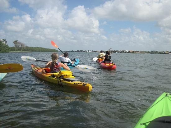 Sea Life Kayak Adventures: Heading out on our Kayak experience...
