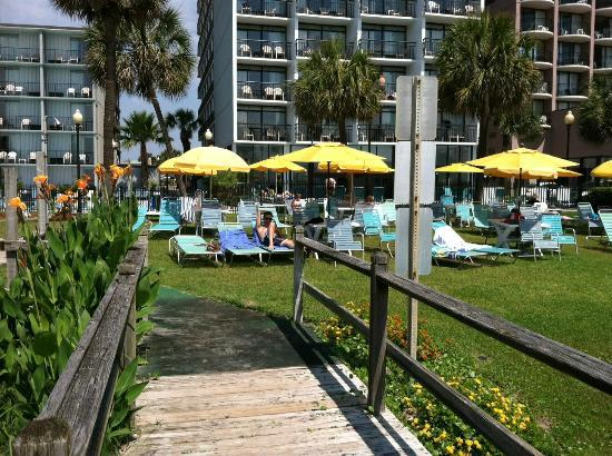 Dayton House Resort: Private Umbrella/grassy area