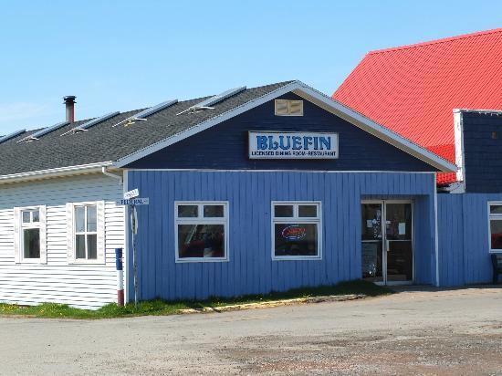 Blue Fin Restaurant: The Restaurant