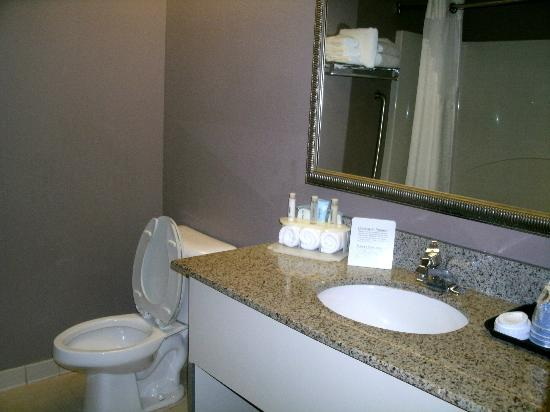 Holiday Inn Express Atlanta W (I-20) Douglasville: Bathroom