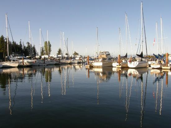 Pacific Playgrounds International RV Park, Cottages, Marina: marina and boat ramp with kids fishing dock