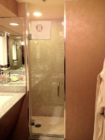 The Brown Palace Hotel and Spa, Autograph Collection: Bathroom shower area