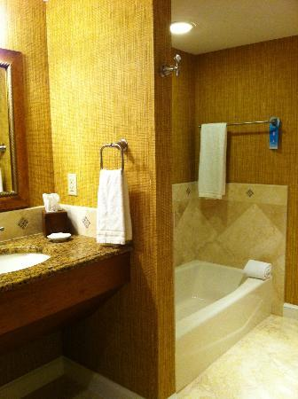 Ponte Vedra Inn & Club: Bath2
