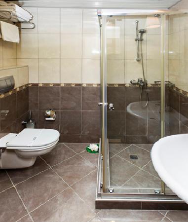 Golden Crown Hotel: Bathroom