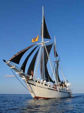 Komodo Cruises Day Tours