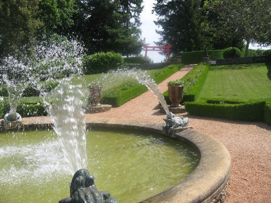 les Jardins du Manoir D Eyrignac: bassin aux grenouilles