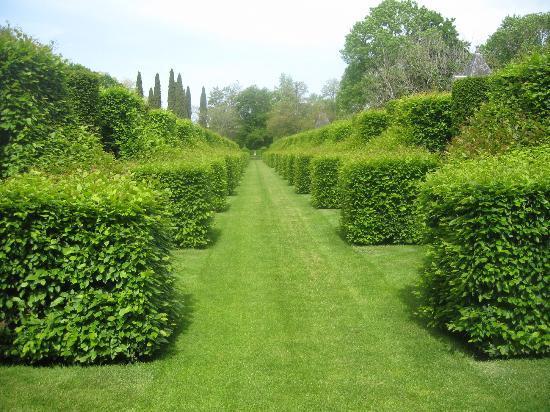 les Jardins du Manoir D Eyrignac: sculpture végétale