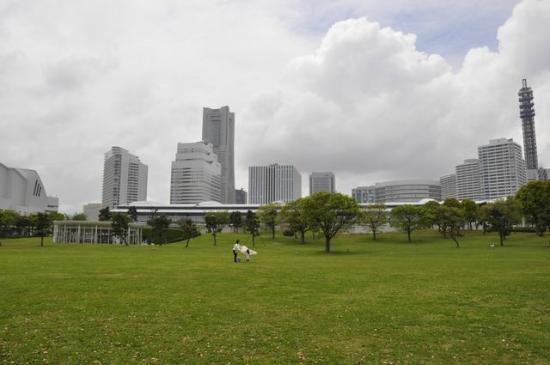 Pacifico Yokohama Seaside Park: GREEN!