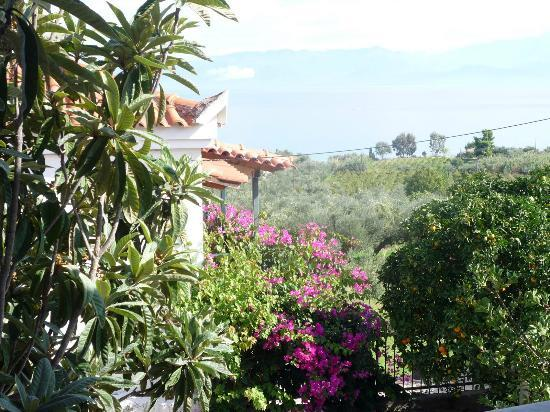 SaintFriday's Holiday Villas: View from outside Villa Mystras