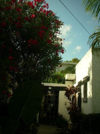 海纳旅馆照片