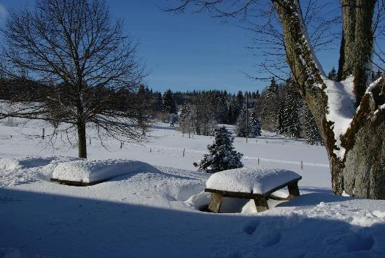 Le Tillau : La terrasse cet hiver