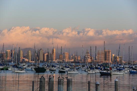 Vagabond Inn - San Diego Airport Marina: marina behind the hotel