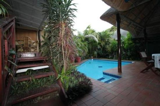 Hornbill House : Swimming pool area
