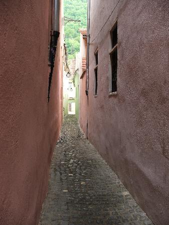 Rope Street - Strada Sforii