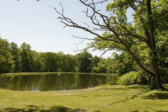 Camp Taylor: the lake