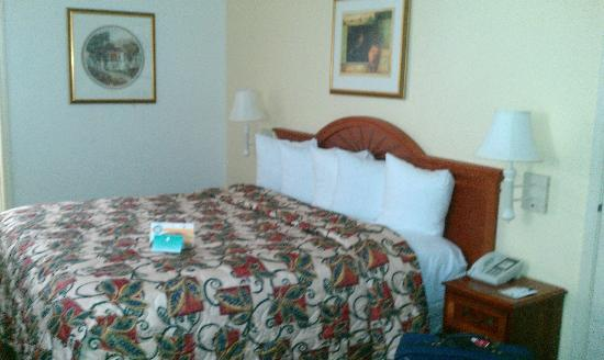 Quality Inn & Suites Biltmore East: bed