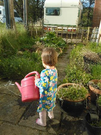 "New Hall Guest House: My daughter ""helping"" in the garden"