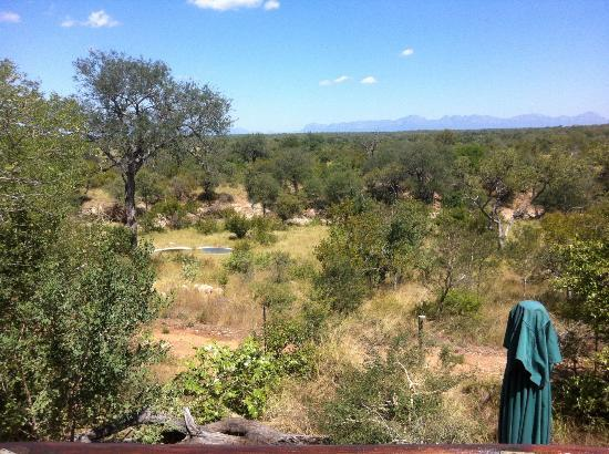 Sausage Tree Safari Camp: View from the bar