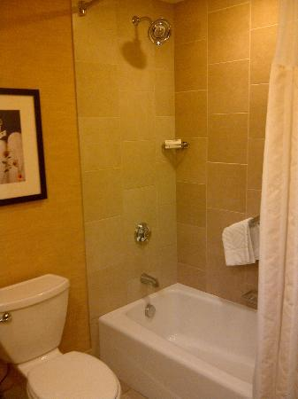 Hilton Minneapolis/Bloomington: Bathroom