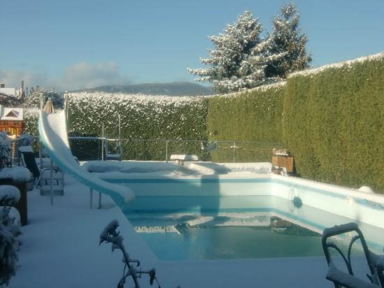 Aaron's Pool and Spa Bed and Breakfast: Surprise Snowfall