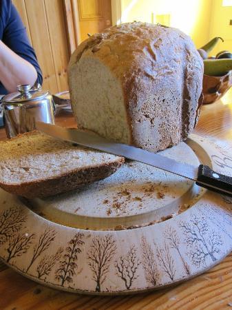 Bryn Elltyd eco Guest House: Delicious homemade bread