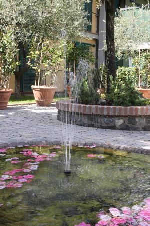 Hotel Villa Cesi : parco