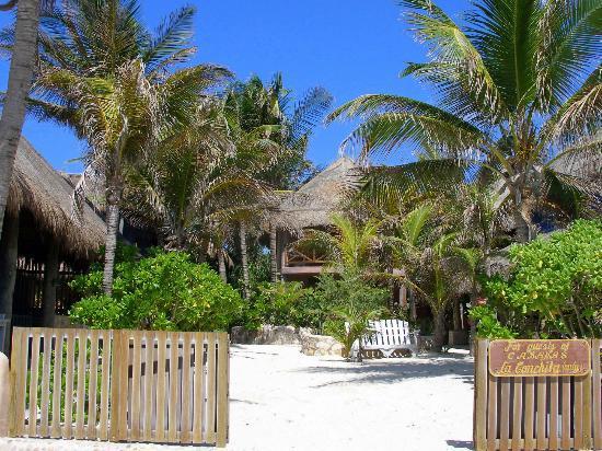 Hotel CalaLuna Tulum: Garden
