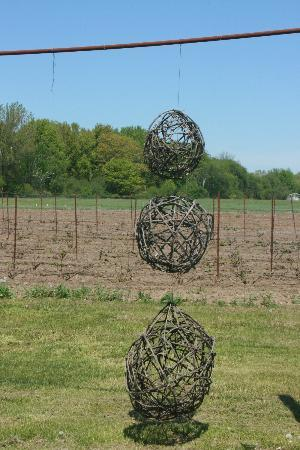 By Chadsey's Cairns Winery and Vineyard: Vine ball decorations