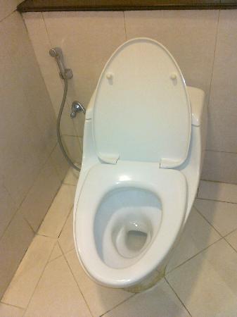 Mason Pine Hotel: Toilet