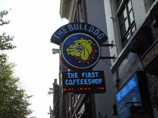 Amsterdam, Holandia: The Bulldog