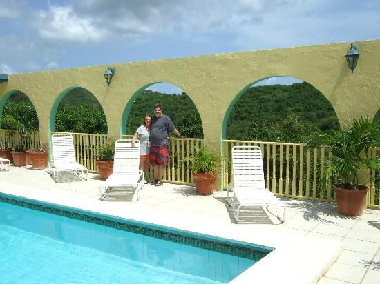 Carringtons Inn St. Croix: pool view