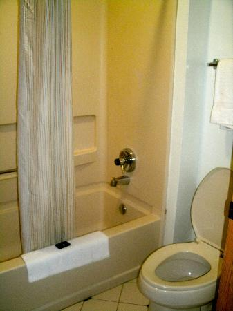 Extended Stay America - Atlanta - Buckhead: Bathroom