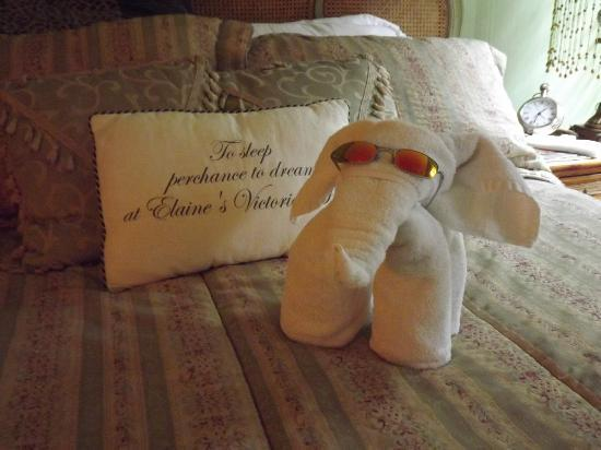 Elaine's Bed & Breakfast Inn: little surprise from housekeeping!