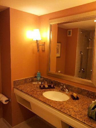 New Orleans Downtown Marriott at the Convention Center: Bathroom