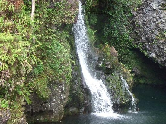Temptation Tours: Waterfall on the way to Hana