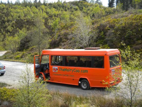 Hairy Bus - Full Naked Bodies-9711