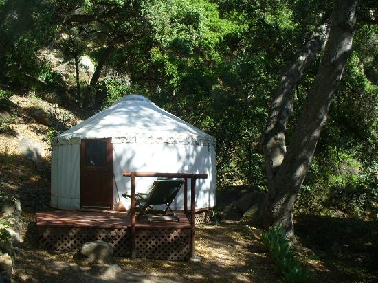 White Lotus Foundation: One of the yurts in the Yurt Village