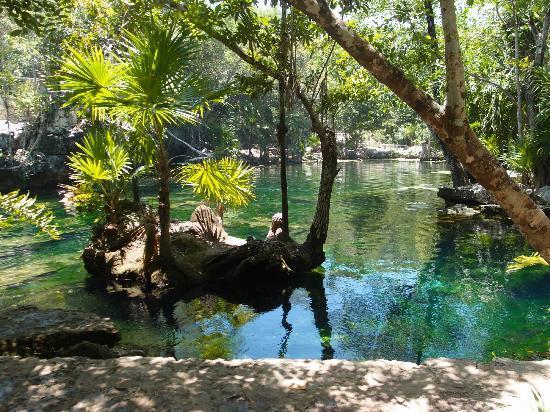 Blue Life: x-tabai cenote