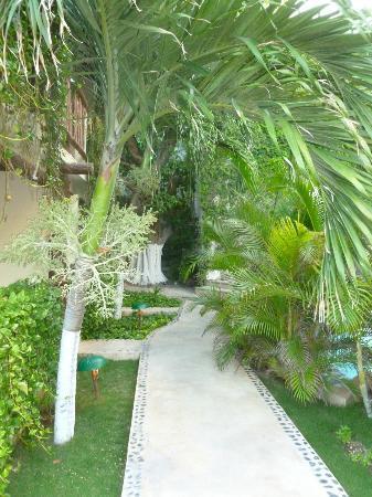 Hotel Posada Sian Ka'an: Graden