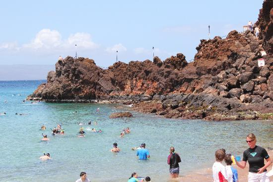 Ka'anapali Beach : Black rock - snorkel and jump