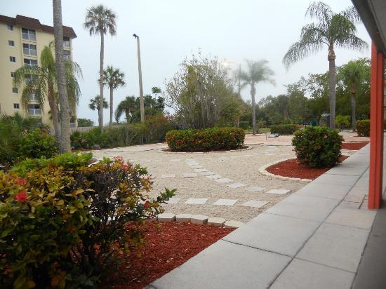 Grounds Around Pool Area Picture Of Wyndham Garden Fort Myers Beach Fort Myers Beach