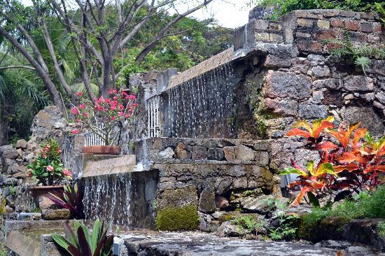 stroll thru the garden picture of st george village botanical garden frederiksted tripadvisor