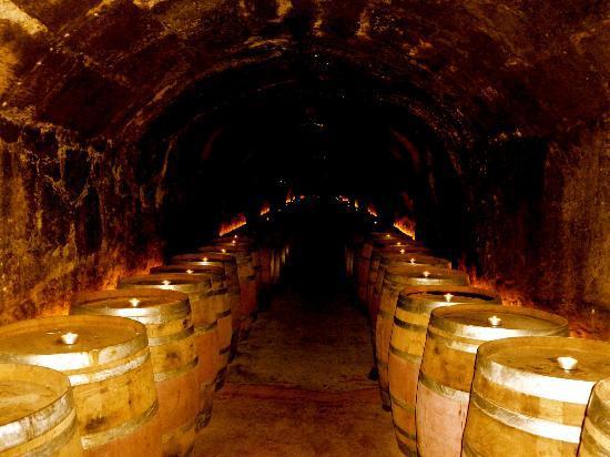 Del Dotto Wine Cave Picture Of Del Dotto Vineyards