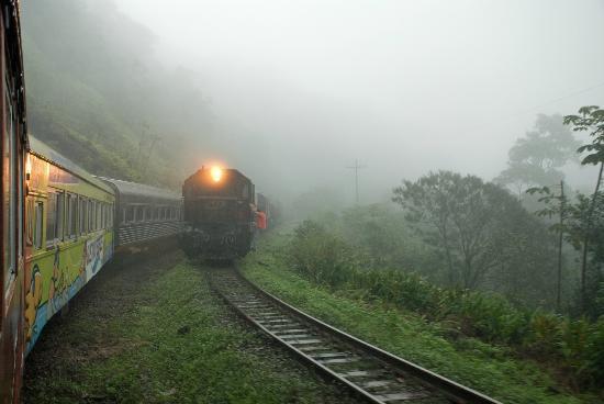 Serra Verde Express: Meeting a heavy ALL freight train