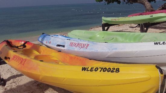 Hedonism II: Kayaks to take out