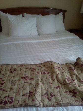 TownePlace Suites New Orleans Metairie: King Bed