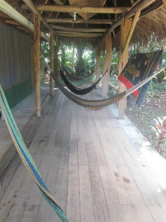 Rio Drake Farm: Hammocks...for lovely naps and reading...