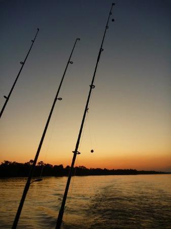 Zambezi River : Fishing&Bird watching&Sunset cruise ♪